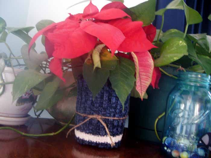 Make these sweater plant wraps in second to cover up any pot!