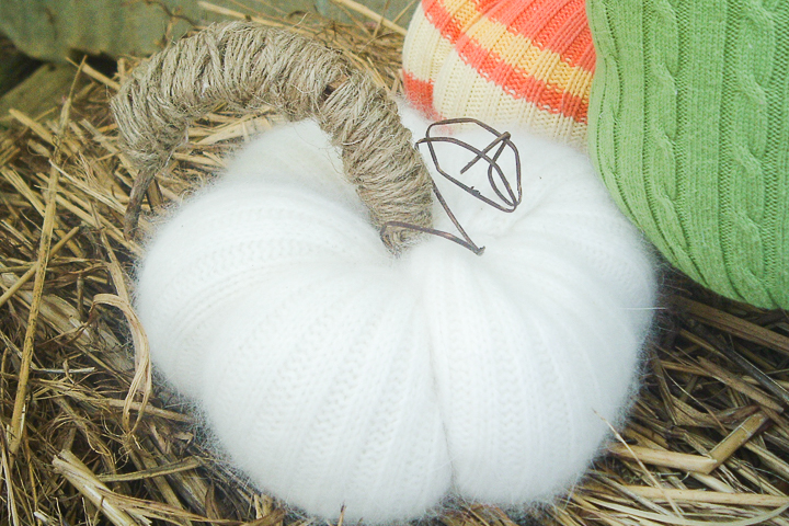 wool sweater pumpkins