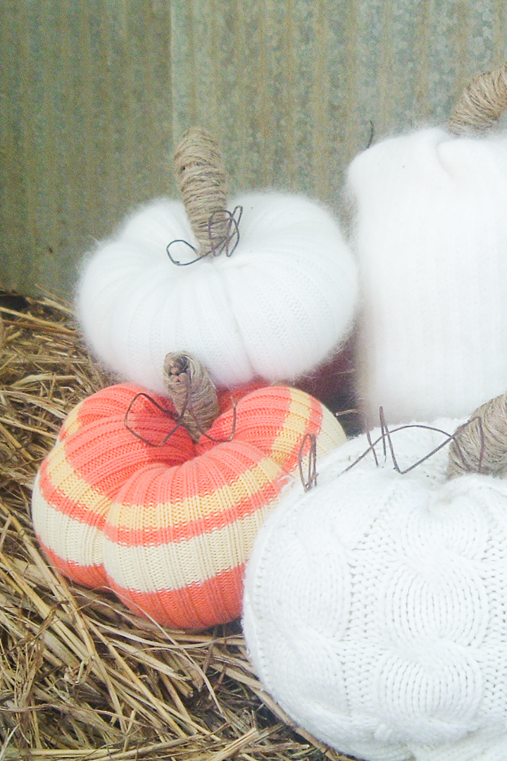 fall pumpkins from sweaters