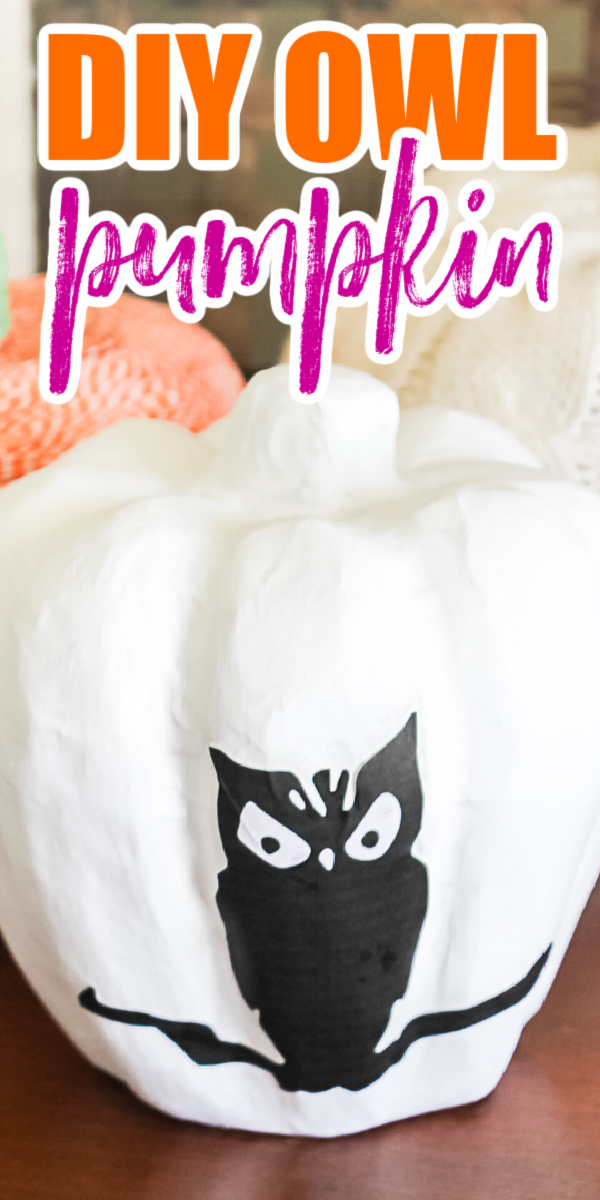 Learn how to make an owl pumpkin for your Halloween decor! This easy decoupage pumpkin craft is perfect for your home! #halloween #owl #pumpkin #pumpkincraft