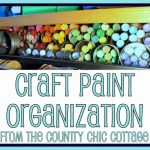 craft paint organization