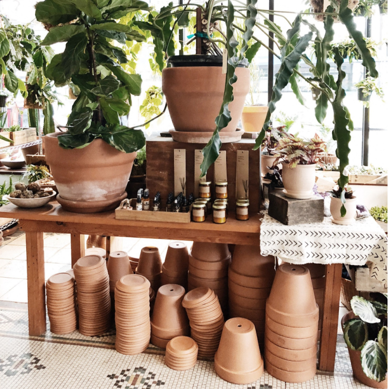types of pots for plants
