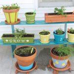 container herb garden-002