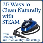 25 ways to clean naturally with steam
