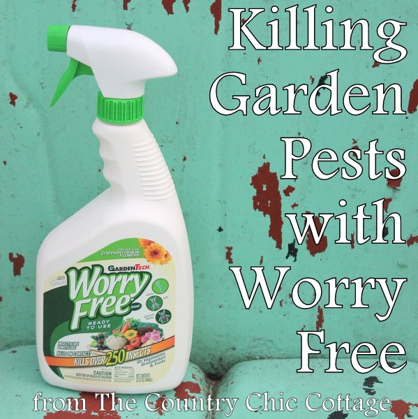 Killing Garden Pests with Worry Free Ready to Use
