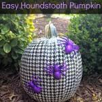 sept cl5 HoundstoothPumpkin-901x1024