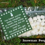 cl2 snowman poop labeled