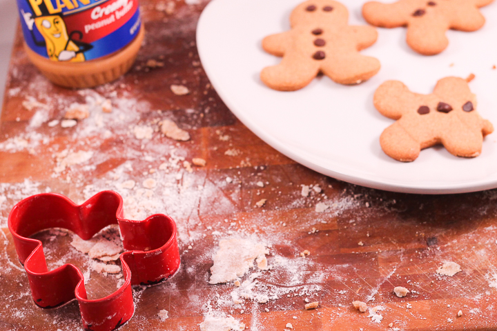 mild gingerbread cookie recipe