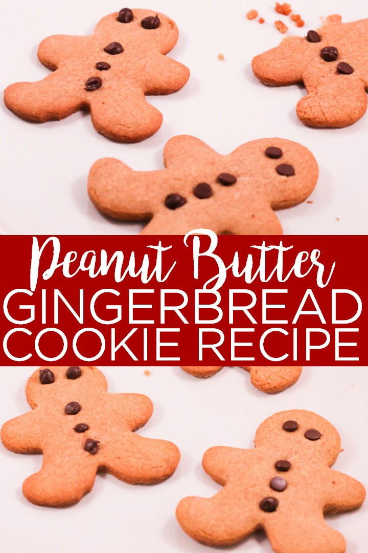 Make this peanut butter gingerbread cookie recipe for your holiday celebrations! The mild gingerbread flavor of these cookies is perfect for those that just want a hint of gingerbread! #christmas #christmascookies #gingerbread #gingerbreadcookies #gingerbreadmen #cookies #recipe #cookierecipe #yum #dessert #holidays