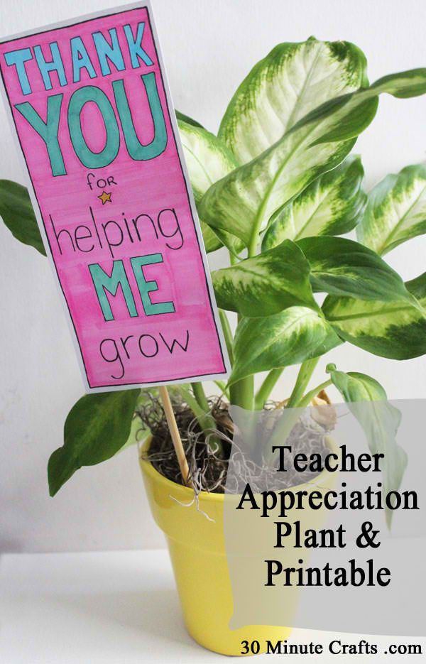 Teacher-Appreciation-Plant-and-Printable
