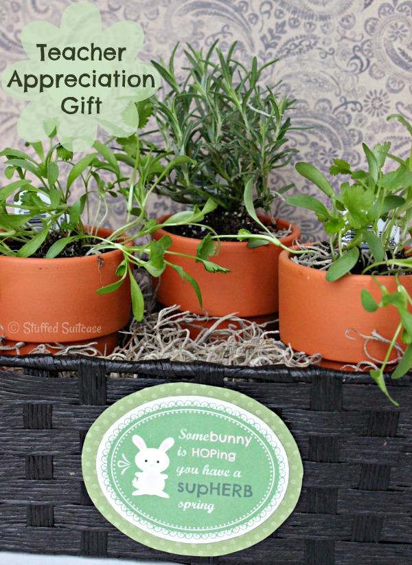 tacl4 Teacher-Appreciation-SupHERB-Spring-Carrot-Gift