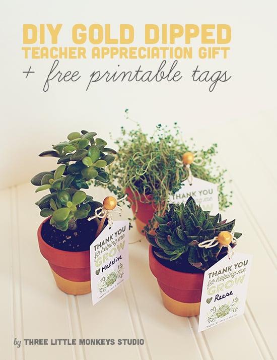 tacl4 teacher-appreciation-gift-idea