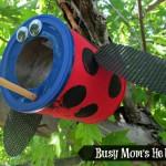 cl1 ladybug-bird-feeder-4
