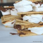 Peanut Butter Nutella Smores -- a fun campfire treat with a new twist!