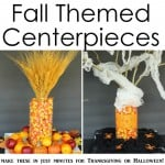 Fall Themed Centerpieces -- use the same basic elements for Halloween and Thanksgiving with these ideas!