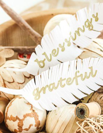 cricut paper feathers