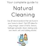 Download this natural cleaning ebook for only $1.99!