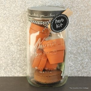 Herb Kit Gift in a Jar -- give a mini herb kit to the one you love on Valentine's Day or any holiday! Everyone loves a gift in a mason jar!