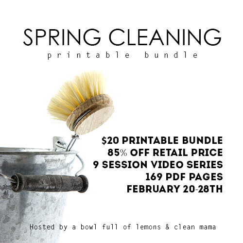 Spring-Cleaning-Bundle-500px