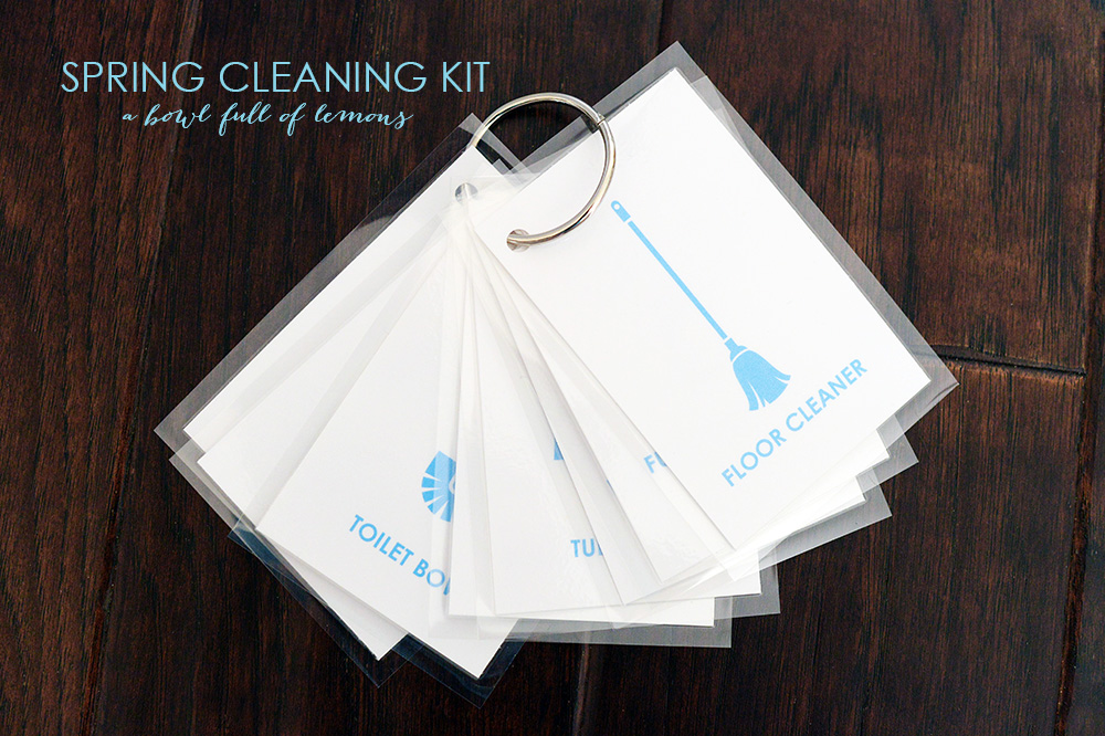 Awesome spring cleaning bundle sale!  Get this for $20 -- 85% off retail -- HURRY limited time!