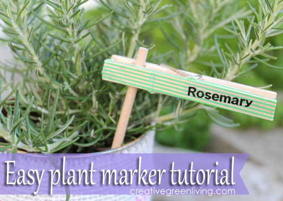 cl3 How to make plant markers from clothespins