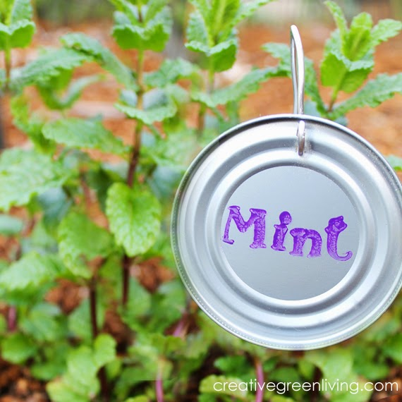 cl5 how to make plant markers from can lids