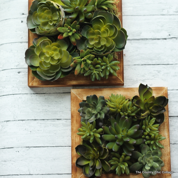 Faux Succulent Wall Art The Country Chic Cottage