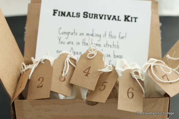 Finals Survival Kit A College Care Package The Country Chic Cottage