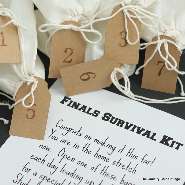 finals survival kit sending this little care package to my college student today - Christmas Ideas For College Students