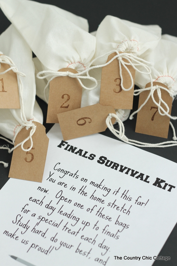 Finals Survival Kit -- sending this little care package to my college student today!
