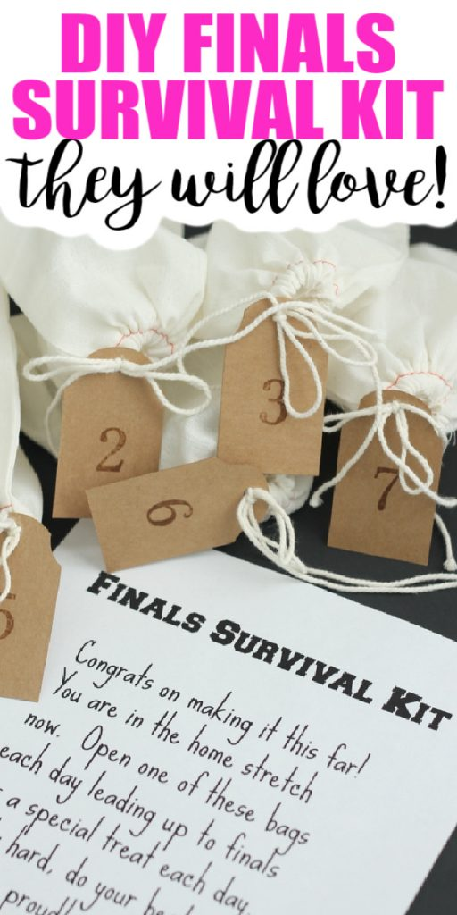 Make this DIY finals survival kit for your college student! Includes instructions, gift ideas, and a free printable note! #finals #collegestudent #giftidea