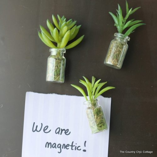 Succulent jar magnets -- make these in minutes and use on your fridge and more!