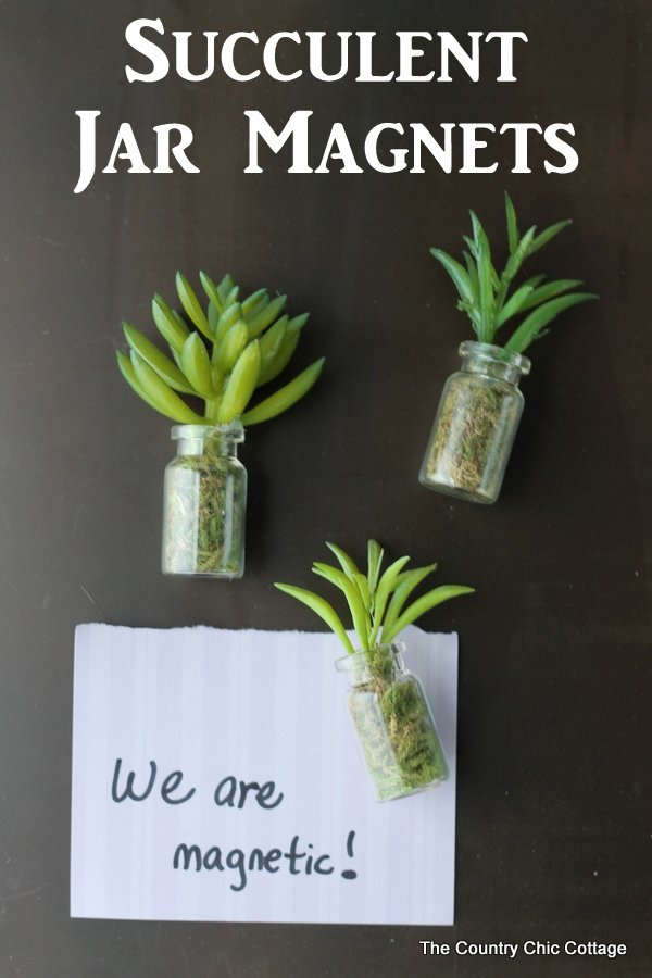succulent jar magnets the country chic cottage