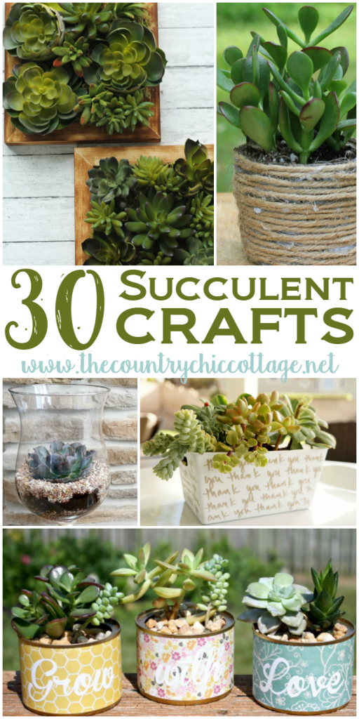 30 Sensational Succulent Crafts The Country Chic Cottage Diy Home Decor Crafts Farmhouse