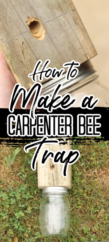 Learn how to make a carpenter bee trap to save the wood around your home! A bore bee trap may be just what you need to keep those pests away!