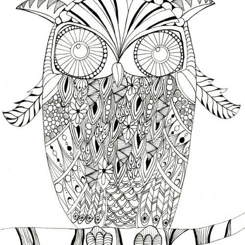 owl coloring sheet