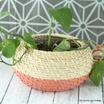 Great ideas for making paint dipped baskets and using them in your home.