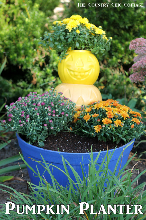 Make this pumpkin planter for your fall garden! A quick and easy project that is perfect for fall!