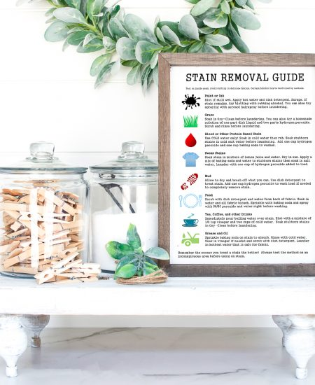 free printable stain removal guide