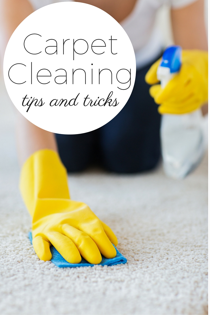 Carpet Cleaning Tips And Tricks The Country Chic Cottage