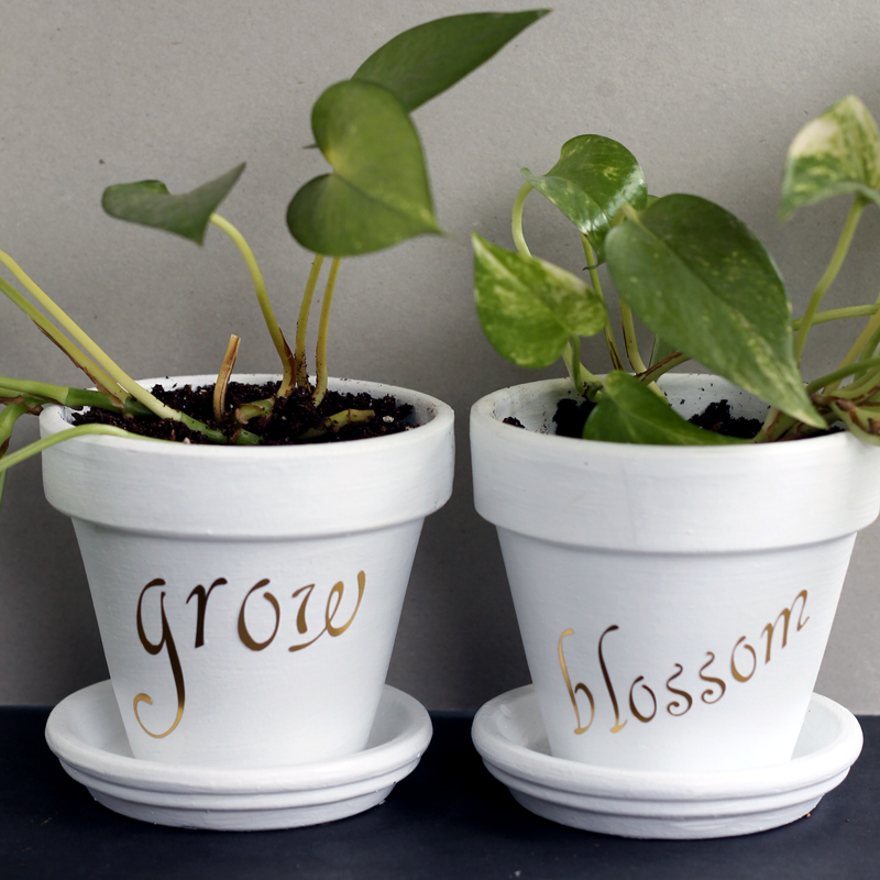 Tutorial on adding words to a flower pot. Loving this metallic version!