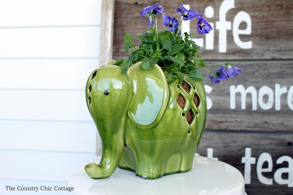 elephant lantern used as a planter