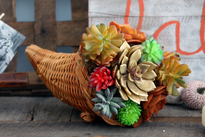 Make a succulent cornucopia for your decor this fall!