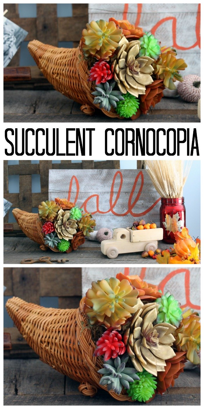 Succulent Cornucopia by The Country Chic Cottage