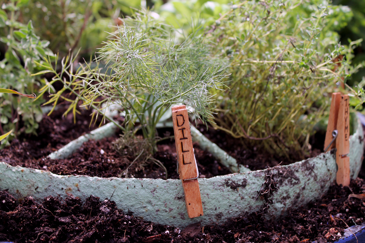 Herb garden design - make a rustic herb garden with an old wheel! Plus instructions on making clothespin herb markers!