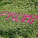 Creative prom proposal ideas using spray chalk that washes away!