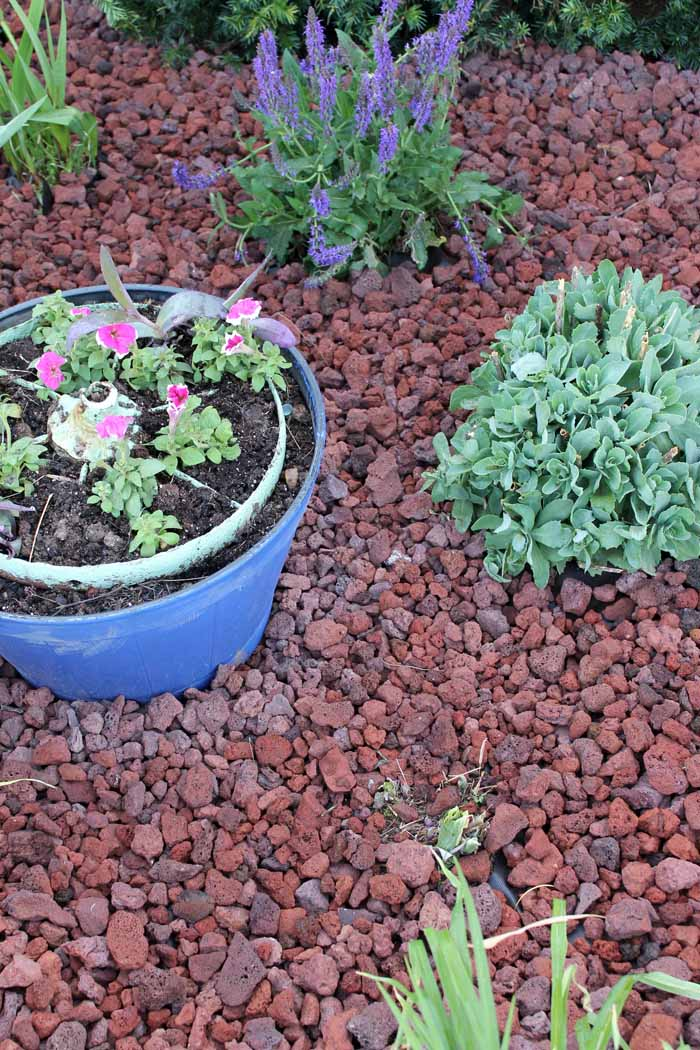 Mulch Alternatives - adding curb appeal to your home with alternatives to traditional landscape materials!