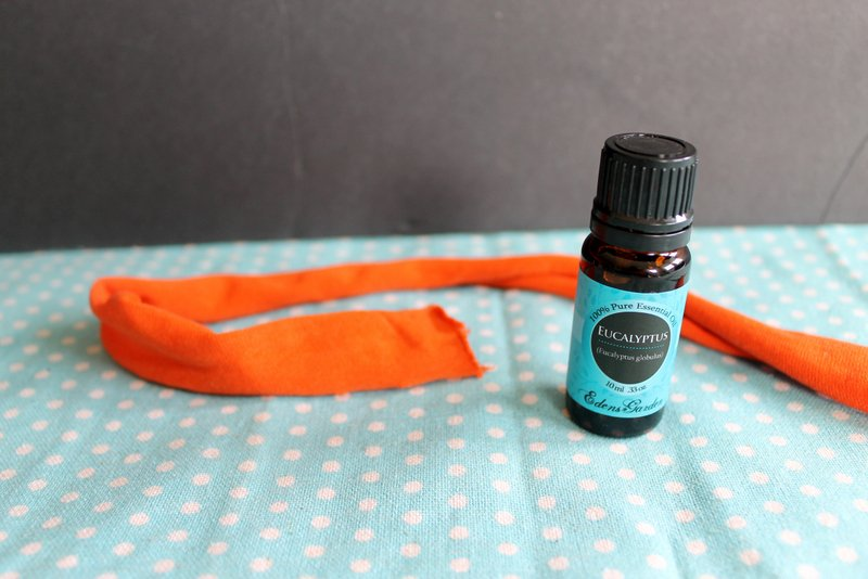 eucalyptus essential oil is a great way to naturally repel flies