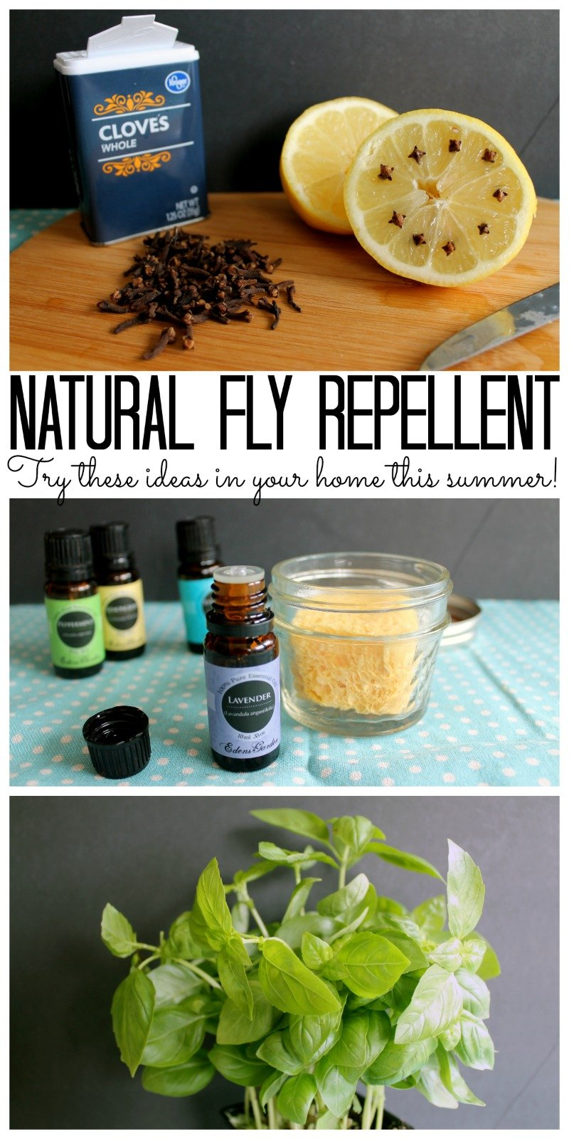 Try these natural fly repellent ideas for your home this summer!