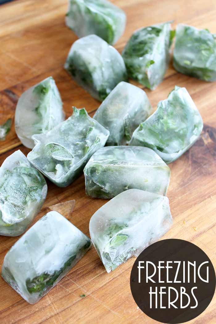 Freezing Herbs: An easy way to preserve those fresh herbs!